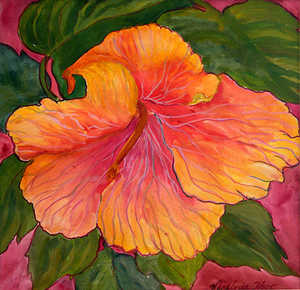 Hibiscus by Virginia Ann Holt